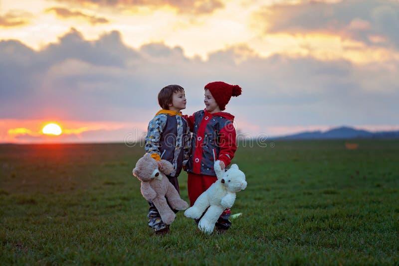 两个可爱的孩子,男孩兄弟,观看的美丽精采 免版税库存图片
