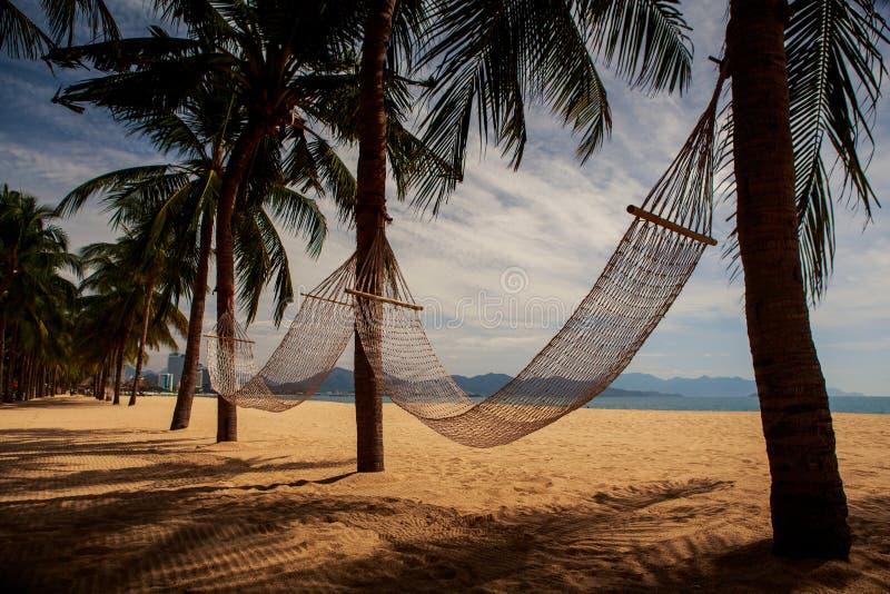 两个吊床看法横跨棕榈树的在沙子海滩 免版税图库摄影