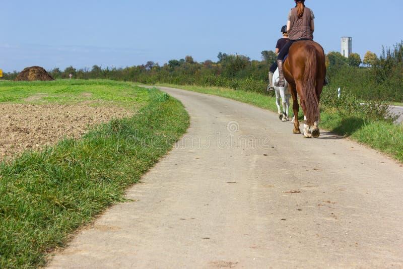 两个夫人骑乘马在一晴朗的9月天 库存图片