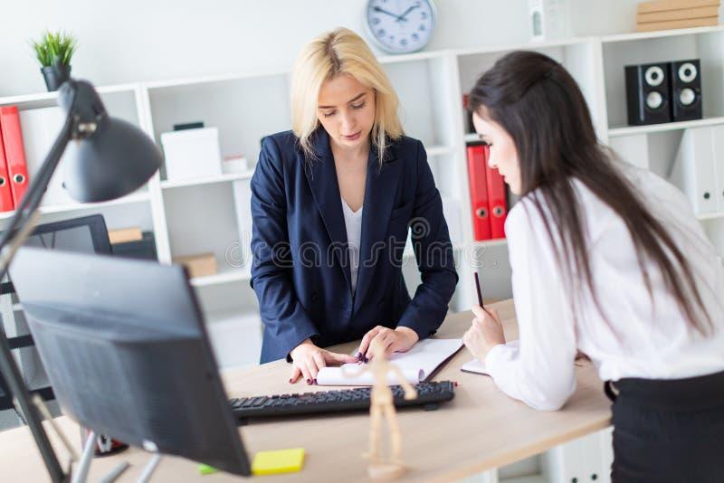 两个女孩在桌和附近弯曲的办公室站立与文件一起使用 免版税图库摄影