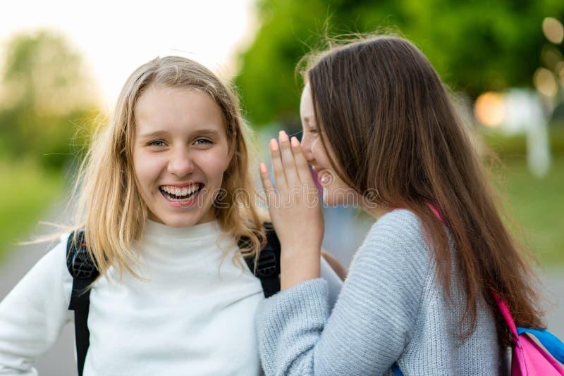 两个女孩女小学生 在夏天在公园本质上 少年在街道上沟通 互相告诉在耳朵 作为背景诱饵概念美元灰色吊异常分支 免版税库存照片