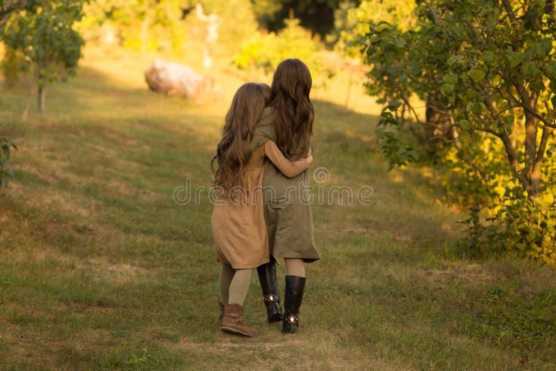 两个女孩,少年,在绿草去,拥抱 回到视图 库存图片