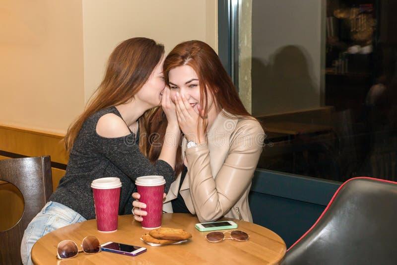两个女孩说闲话在咖啡馆酒吧 免版税库存照片