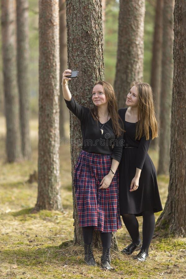 两个女朋友在智能手机做selfie照片,当站立在杉木中在公园时 自然 免版税库存图片
