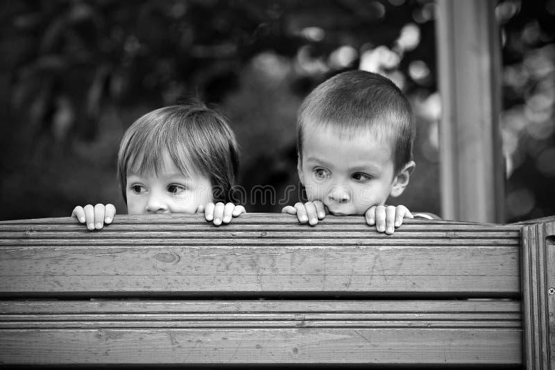 两个好奇男孩,看在木墙壁 免版税图库摄影