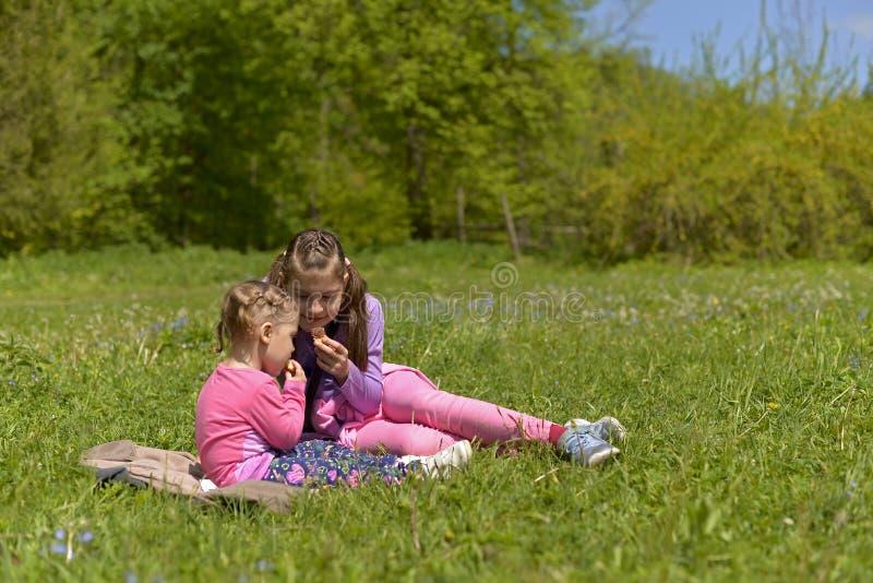 两个姐妹有一顿野餐在一个绿色草甸 库存照片