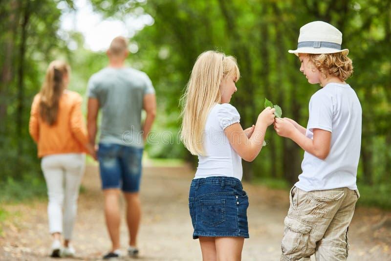 两个孩子好奇地收集叶子 免版税库存图片