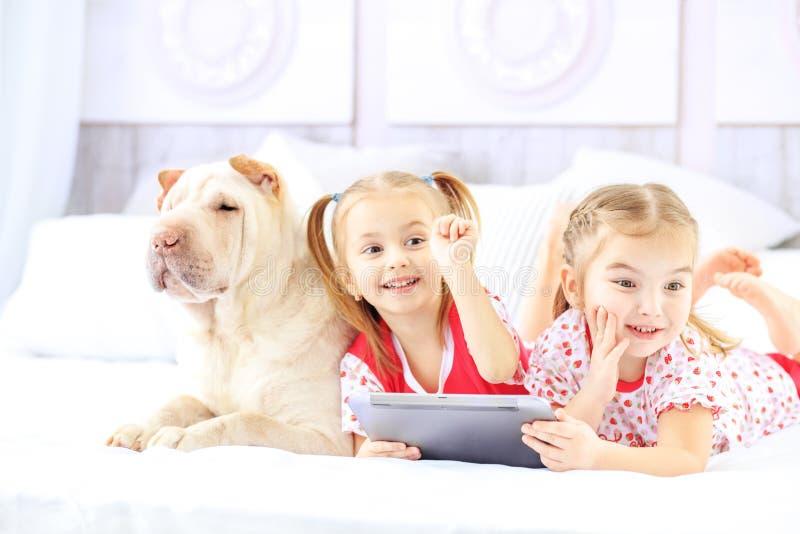 两个小孩子在与片剂的床上说谎 狗 concep 库存图片