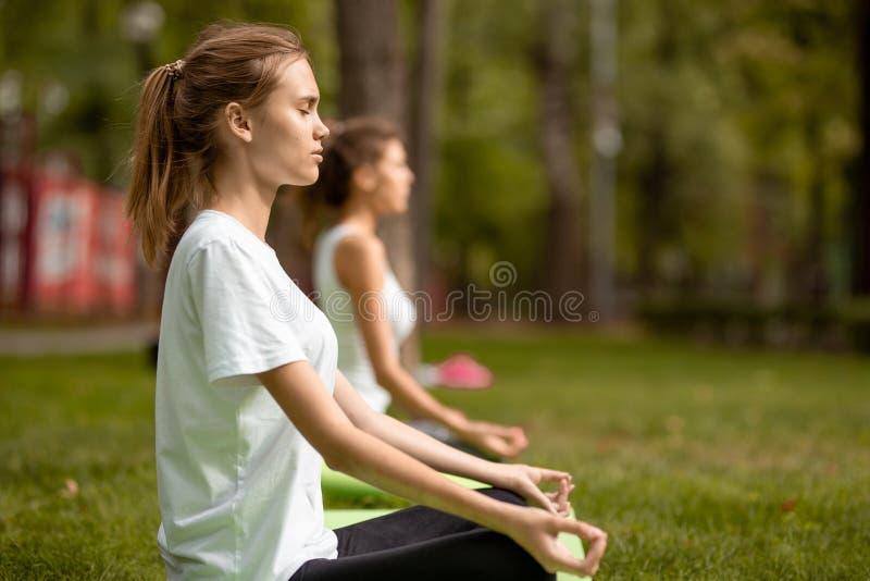 两个年轻亭亭玉立的女孩在与做瑜伽的结束眼睛的莲花坐坐在瑜伽席子在绿草在公园  库存照片