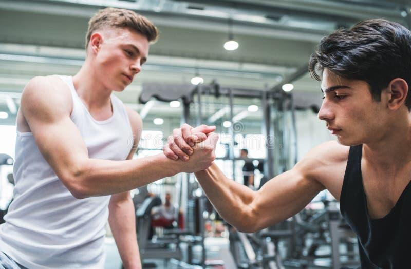 两个年轻人友好的握手crossfit健身房的 库存图片