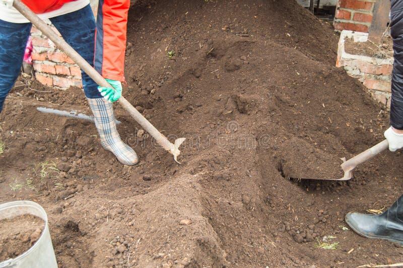 两个年轻人工作在庭院里的农夫男人和妇女,开掘与铁锹的土壤 库存照片