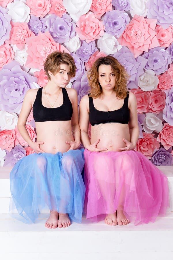两个怀孕的女朋友 库存照片