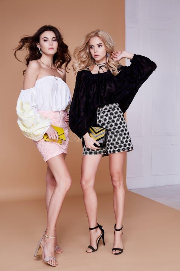 两个性感的白肤金发和深色的妇女朋友或敌手美好的fac 库存照片