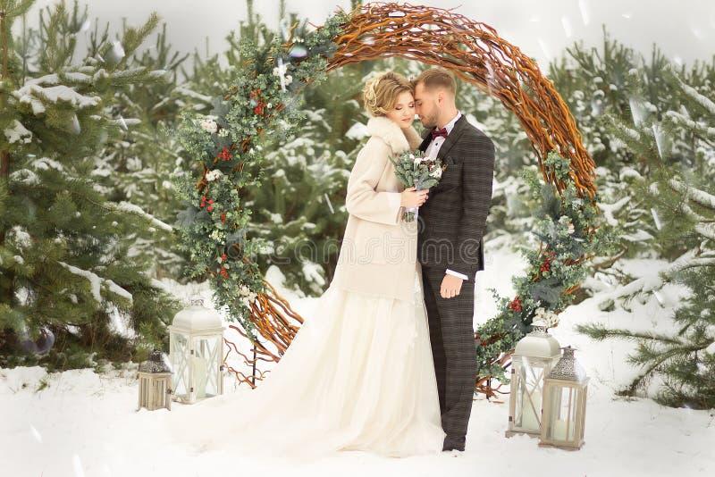 两个恋人、男人和妇女,一个婚礼在冬天 新娘和新郎爱 反对装饰和树背景,雪 举行a 免版税库存图片