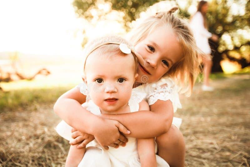 两个愉快的妹在美丽的公园爱并且拥抱 可爱的儿童步行和笑在绿色草甸 免版税库存图片