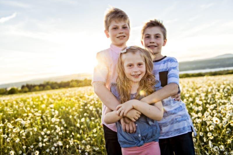 两个愉快的快乐的兄弟和姐妹画象日落的,室外 库存图片
