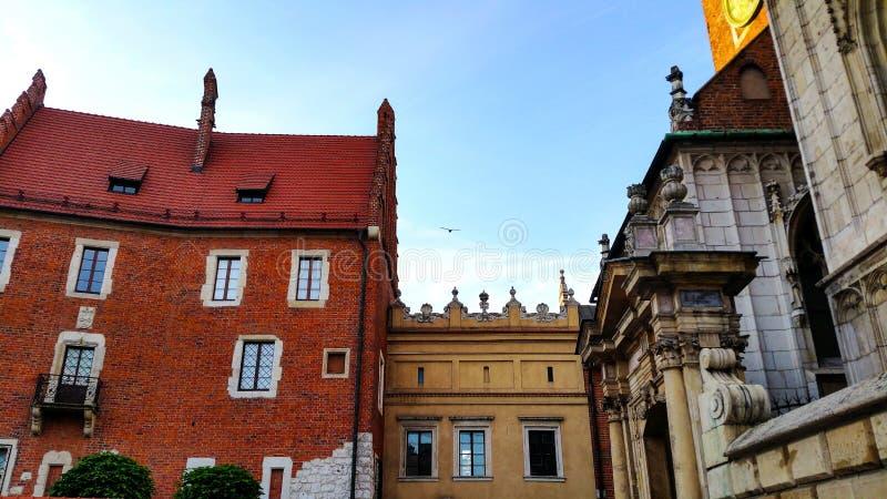 两个新生教堂圆顶在大教堂一边的Wawel小山的在克拉科夫波兰 图库摄影