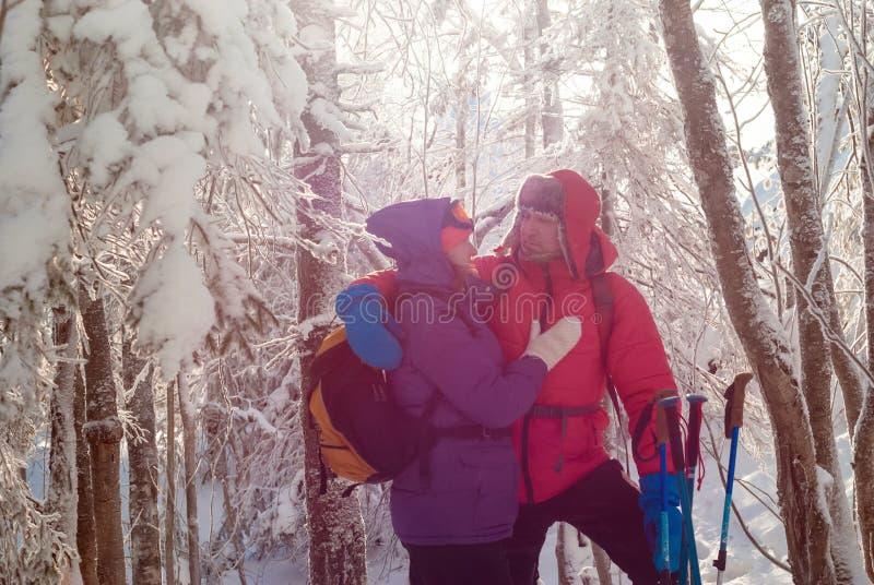 两个旅客在冬天森林里 库存照片