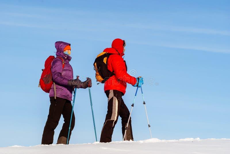 两个旅客在反对天空的冬天 免版税库存图片