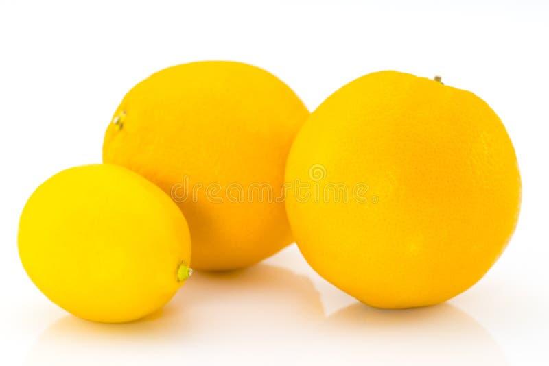 两个橙色桔子和一个柠檬 库存照片
