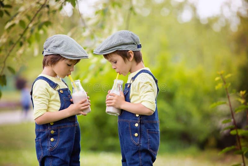 两个漂亮的孩子,男孩兄弟,吃草莓和co 图库摄影