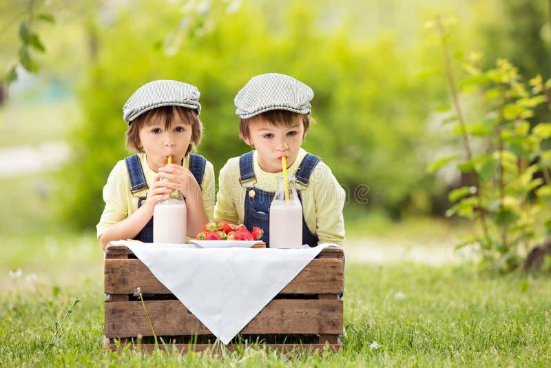 两个漂亮的孩子,男孩兄弟,吃草莓和co 免版税库存图片