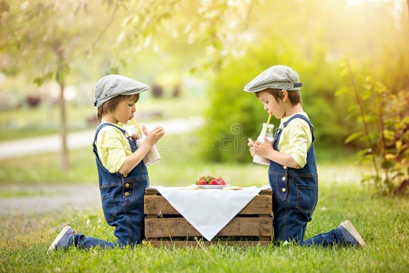 两个漂亮的孩子,男孩兄弟,吃草莓和co 免版税图库摄影