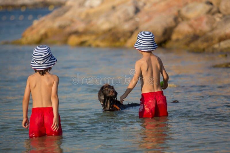 两个甜孩子,男孩,使用与在海滩的狗 免版税图库摄影