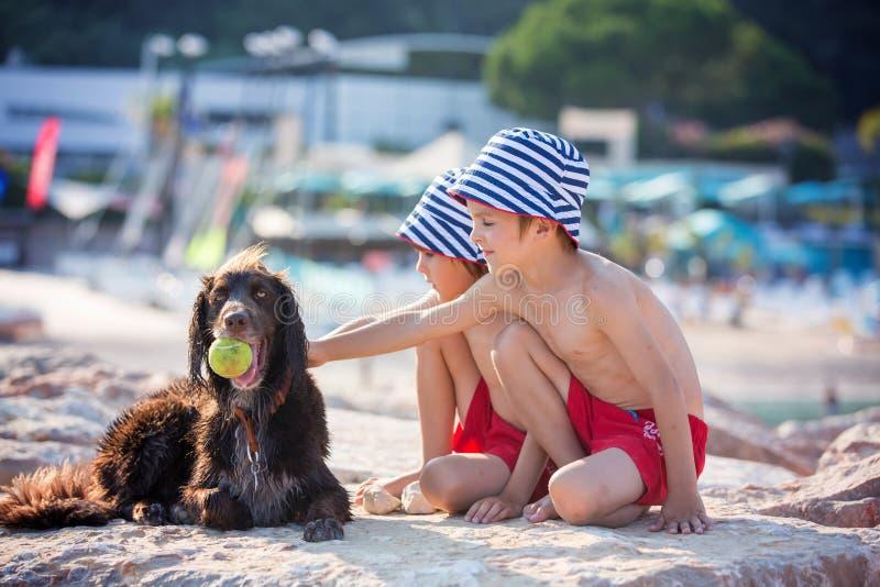 两个甜孩子,男孩,使用与在海滩的狗 免版税库存照片