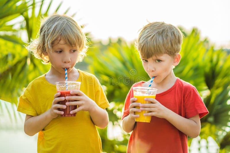 两个男孩喝健康圆滑的人反对棕榈树背景  芒果和西瓜圆滑的人 r 库存照片