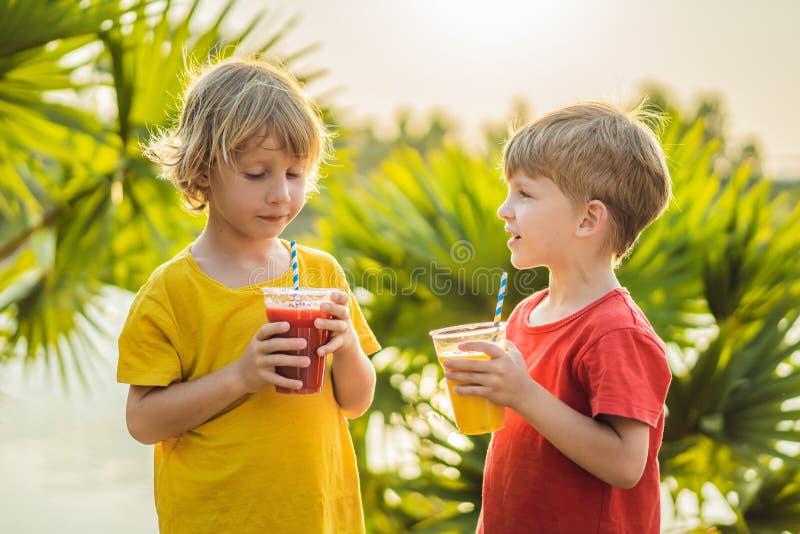 两个男孩喝健康圆滑的人反对棕榈树背景  芒果和西瓜圆滑的人 r 库存图片