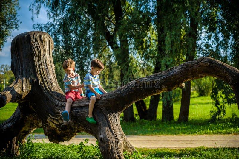 两个男孩坐日志 孩子在夏天同水准走 免版税库存图片