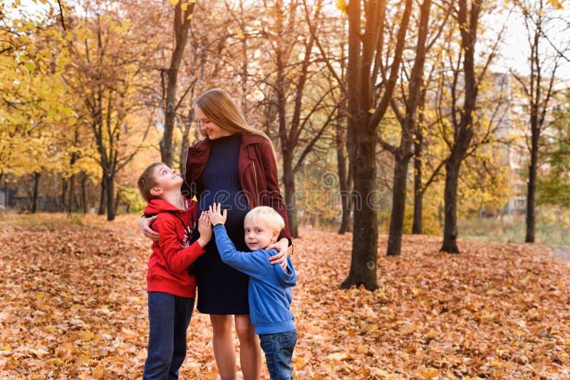 两个男孩拥抱他们怀孕的妈妈 o 背景的秋天公园 库存照片