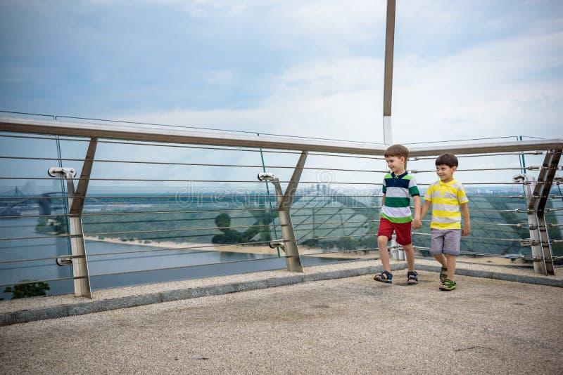 两个男孩画象哄骗在桥梁和看的步行下来,走外面在好日子,年轻男孩的孩子放松户外 免版税库存照片