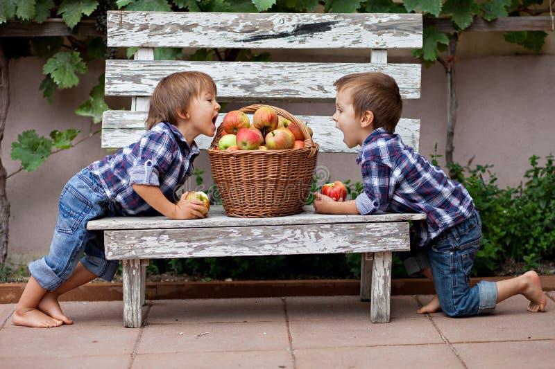 Download 两个男孩,吃苹果 库存图片. 图片 包括有 乐趣, 早晨, 衬衣, bataan, 牛仔裤, 红色, 微笑 - 36981313