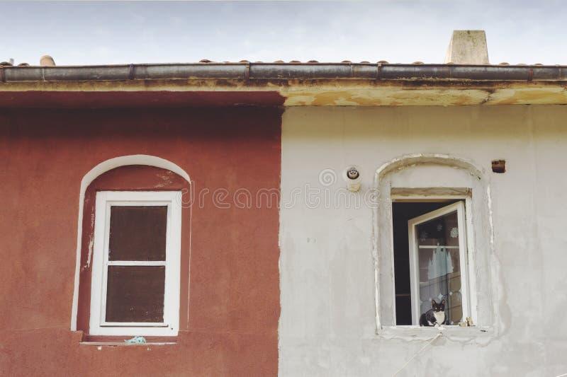 两个窗口和一只猫 不完美的对称 免版税库存图片