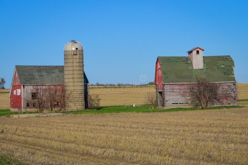 两个红色谷仓在Farmfield 库存图片