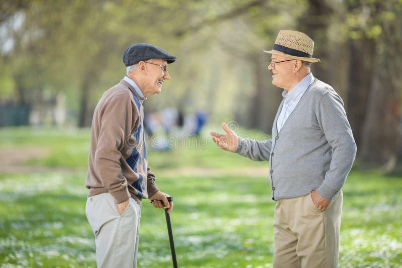 两个老朋友有交谈在公园 免版税库存图片