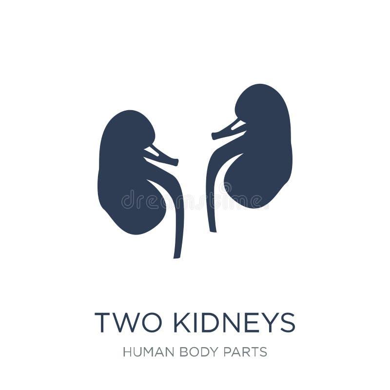 两个肾脏象 在白色b的时髦平的传染媒介两肾脏象 库存例证