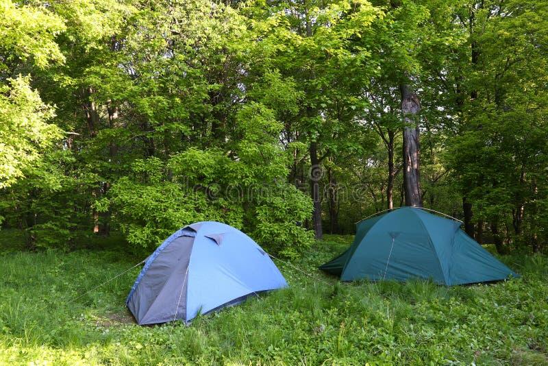 Download 两个蓝色帐篷在绿色森林里 库存图片. 图片 包括有 结构树, 森林, 本质, 活动家, 健康, 齿轮, 双周 - 72363375