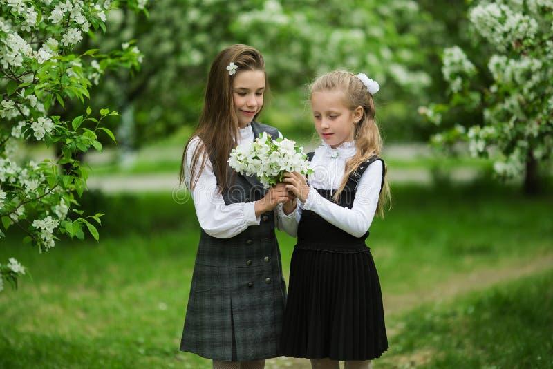 两个逗人喜爱的女小学生女孩在学校以后的一个苹果开花的庭院里 年终学期 免版税库存图片