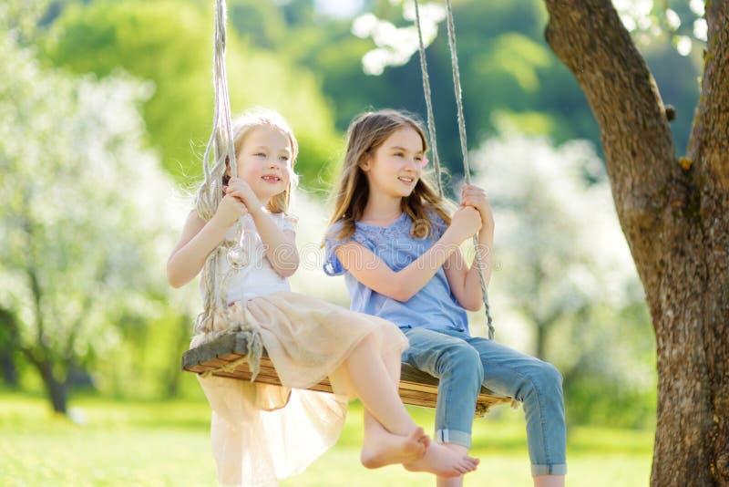 两个逗人喜爱的姐妹获得在摇摆的乐趣在开花的老苹果树庭院户外在晴朗的春日 免版税图库摄影