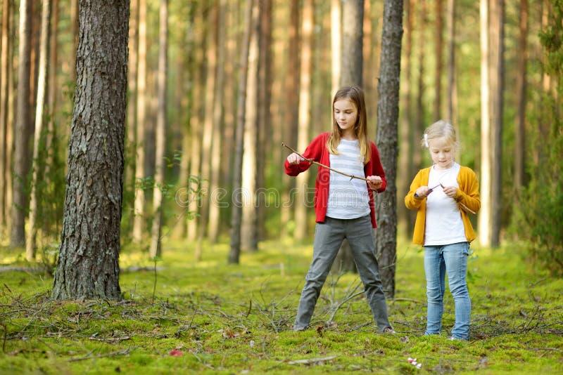 两个逗人喜爱的年轻姐妹获得乐趣在森林远足期间在美好的夏日 探索自然的孩子 活跃家庭休闲 免版税库存图片