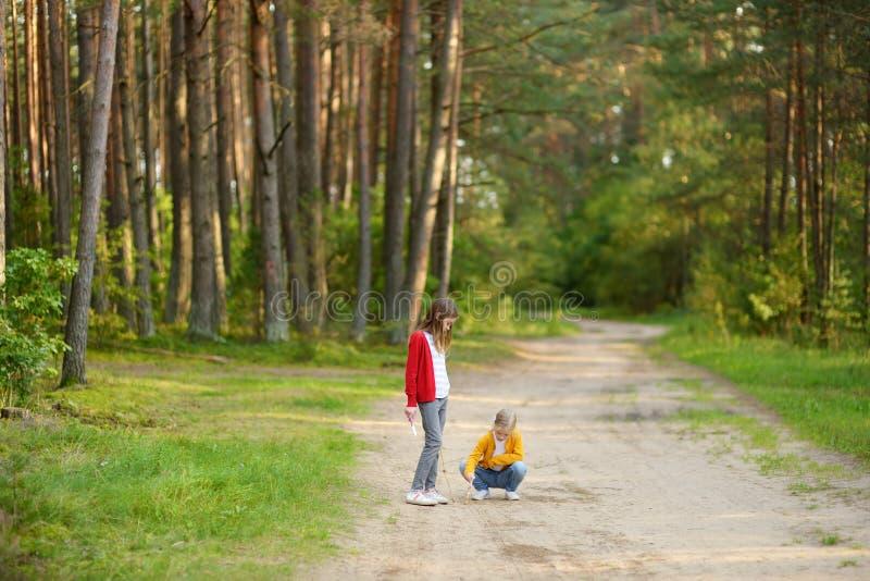 两个逗人喜爱的年轻姐妹获得乐趣在森林远足期间在美好的夏日 探索自然的孩子 活跃家庭休闲 免版税图库摄影