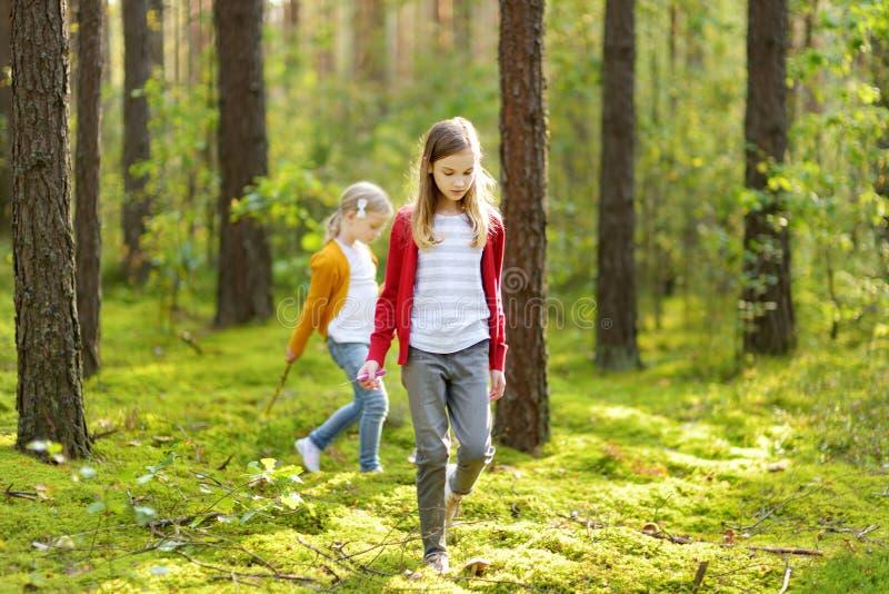 两个逗人喜爱的年轻姐妹获得乐趣在森林远足期间在美好的夏日 探索自然的孩子 活跃家庭休闲 库存照片