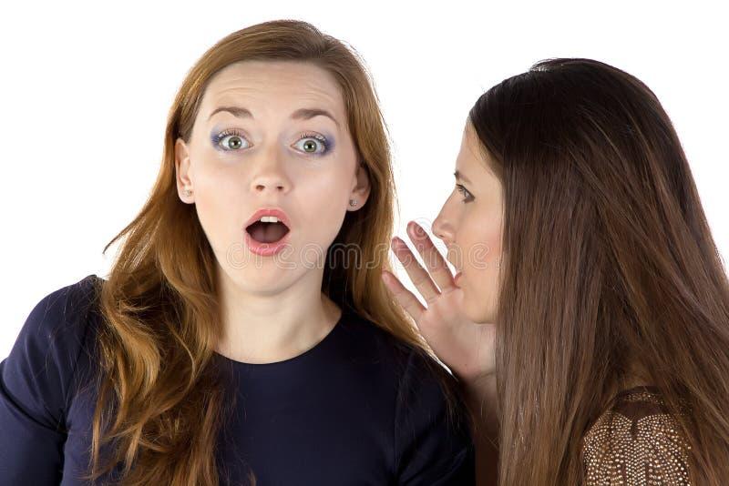 两个闲话女孩画象  免版税库存照片