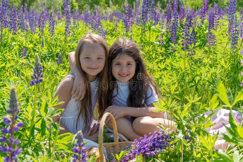 两个青少年的女孩在花的一个美好的领域拥抱并且微笑 图库摄影