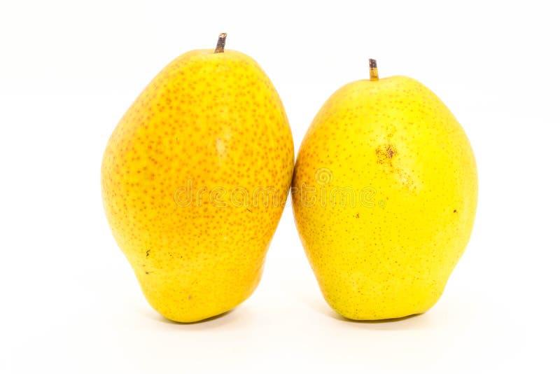 两个黄色新鲜的成熟有机梨特写镜头在白色backgrou的 免版税库存照片