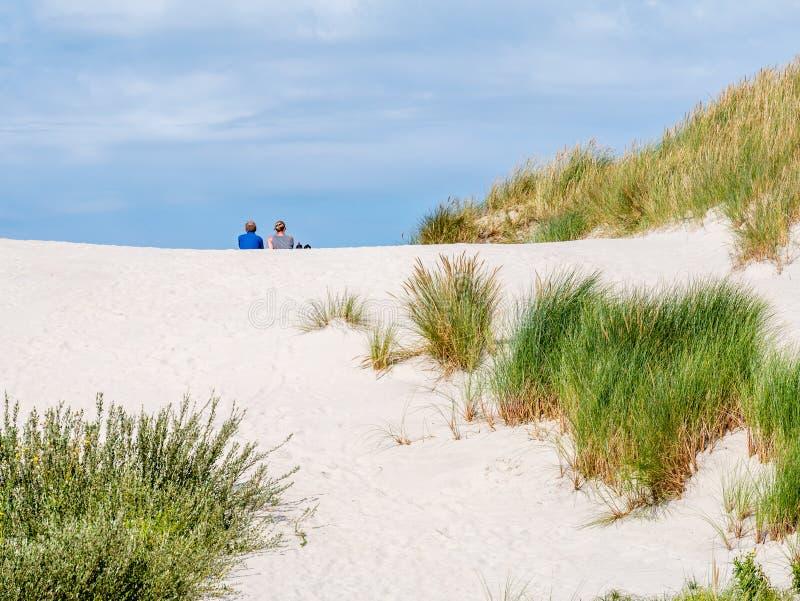 两人背面图一起坐在自然保护Het Oerd的沙丘在西部弗里斯兰省人海岛阿默兰岛,弗里斯上, 免版税库存照片