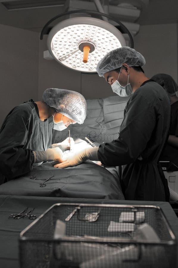 两位兽医外科医生在手术室 免版税图库摄影